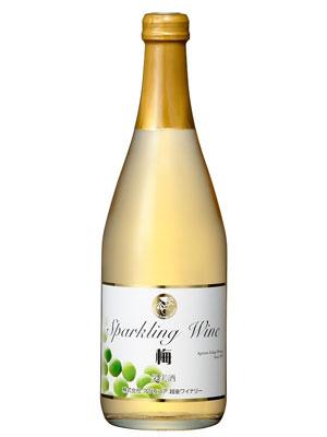 越後ワイン スパークリングワイン 梅 500ml