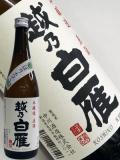 越乃白雁 本醸造 しぼりたて生原酒720ml