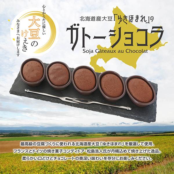大豆のガトーショコラ10個入