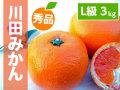 川田みかんL3kg商品サムネイル