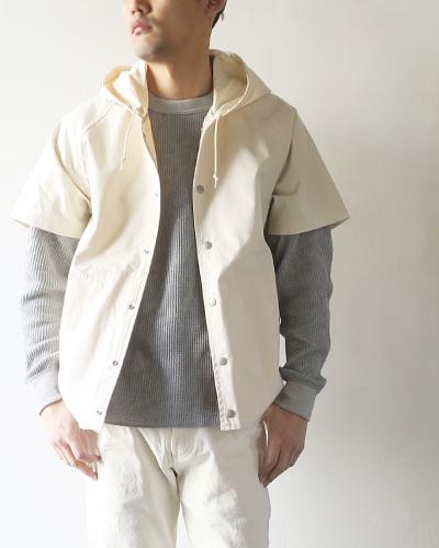 SASSAFRASのジャケットのサムネイル画像