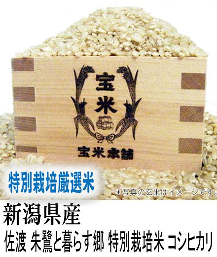 30年産 新潟県産 佐渡 朱鷺と暮らす郷 特別栽培米 コシヒカリ(玄米1Kg)