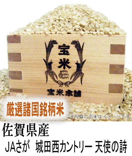 30年産 佐賀県産 JAさが 城田西CE 天使の詩 (玄米25Kg) 30年産契約数量完売いたしました。 有難うございました。