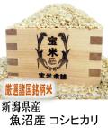 令和元年産 新潟県産 魚沼産 コシヒカリ(玄米1Kg)
