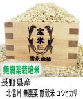 令和2年産 長野県産 北信州 栽培期間中無農薬 献穀米 コシヒカリ(玄米1Kg)