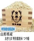 令和元年産 山形県産 おきたま 特別栽培米 つや姫(玄米1Kg)