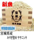 令和元年産 宮城県産 登米 ササニシキ(玄米1Kg)