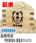令和元年産 島根県産 隠岐 特別栽培米 ジオパーク 藻塩米 コシヒカリ(玄米1Kg)