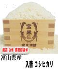 令和2年産 富山県産 入善 コシヒカリ(白米5Kg)