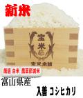 令和元年産 富山県産 入善 コシヒカリ(白米5Kg)
