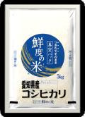 愛知県産 コシヒカリ 無洗米 5kg 真空パック