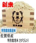 令和元年産 佐賀県産 JAさが あうち 特別栽培米 さがびより (玄米25Kg)