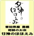 令和元年産 愛知県産 女神のほほえみ(玄米1kg)