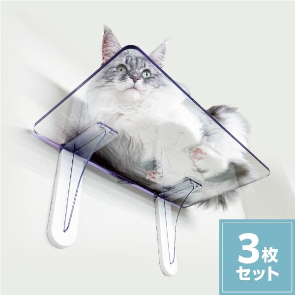 キャットステップ PC4022【3枚セット】