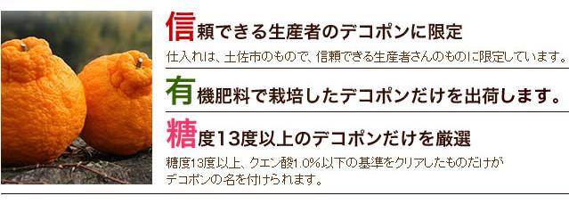 武田青果【Fruit Takeda】のデコポン通信販売