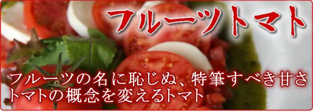 フルーツトマトの通販
