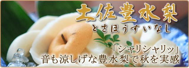 豊水梨の通販