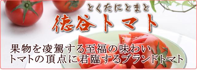 徳谷トマトの通販