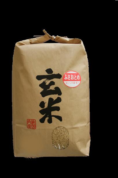 【令和2年産】 長狭米ふさおとめ玄米 10kg