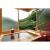 【宿泊券】飲泉、自家源泉かけ流しの秘湯 観音温泉
