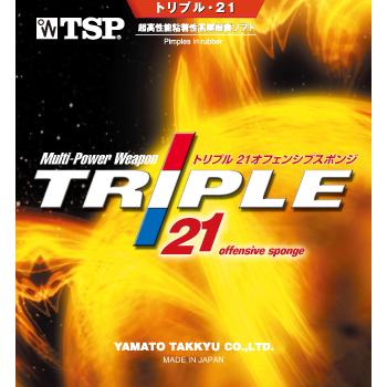 20561_トリプル・21 sponge