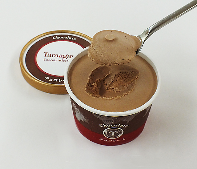 たまがわチョコレートアイスクリーム【12個】