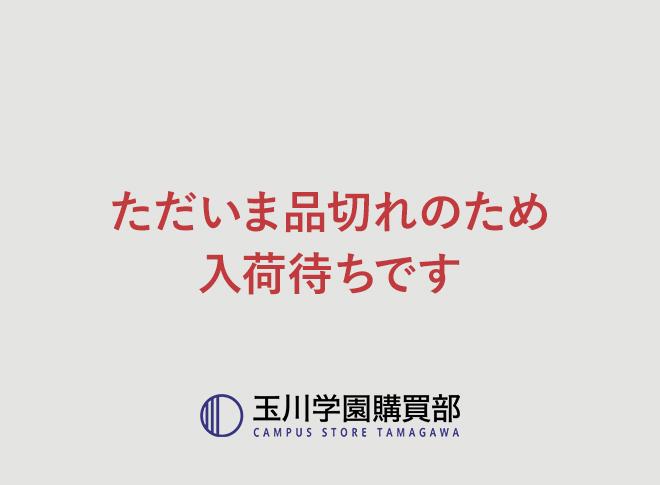 はちみつおこし(12個入り)