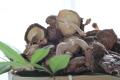 九州産原木栽培!徳用香信(こうしん)肉薄だがタップリ200g「香信しいたけ(3cm〜5cm)」