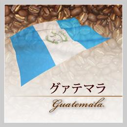 グァテマラ(オーガニック)