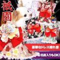 艶やか晴れ着★祇園(ぎおん)