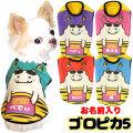 愛犬のお名前入り★ゴロピカ5