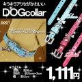 犬,首輪,カラー