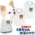 愛犬のお名前入りくまちゃん水玉シャツ【犬服専門店タムベディ】