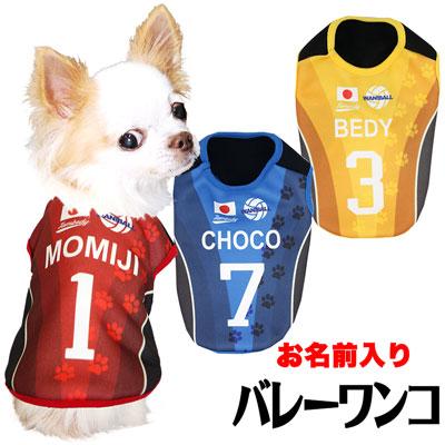 愛犬のお名前入り★バレーボールワンコ