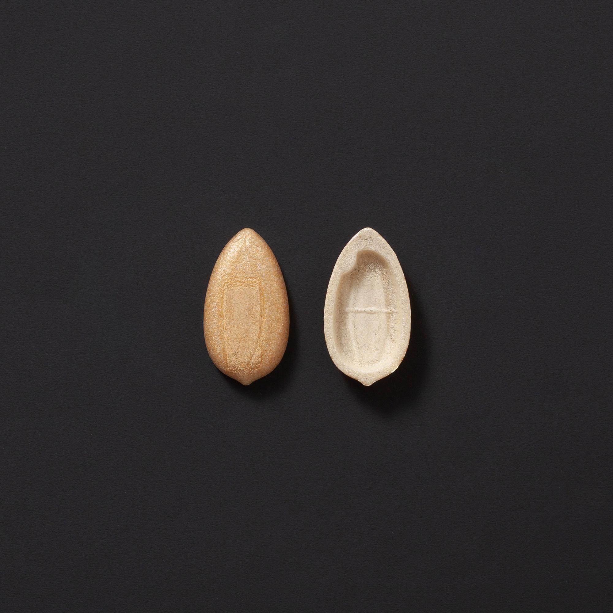 [C030] 稲