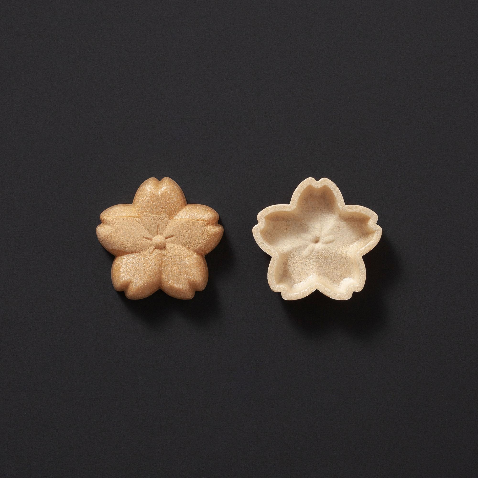 [C125] 桜花