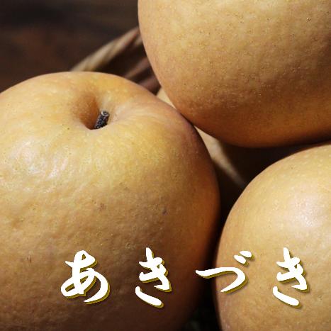 あきづき 梨 丹後の梨