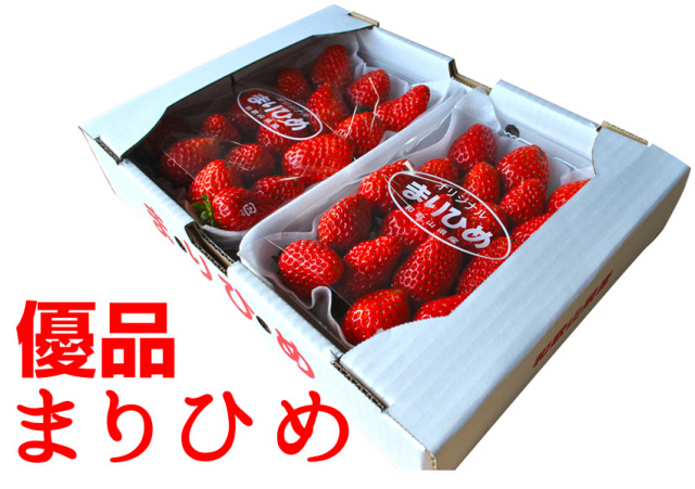 紀州イチゴ「優品まりひめ」