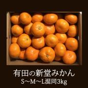 『有田の新堂みかん』早生 S~M~L混同3kg 予約販売 11月25日以降順次発送