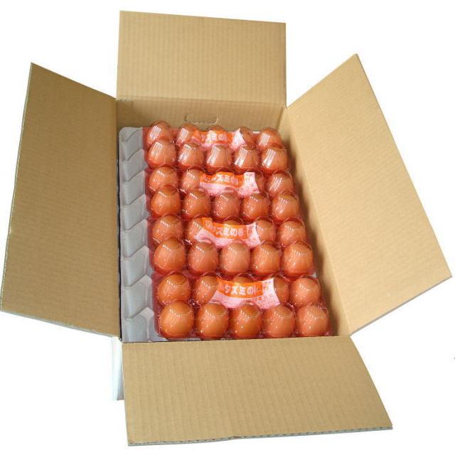 タズミの卵Lサイズ10個入り×8パックセット