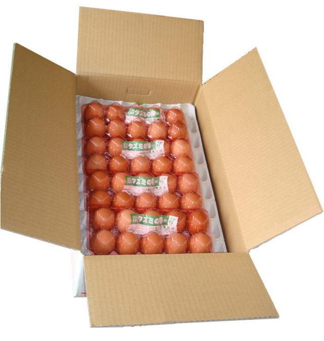 タズミの卵Mサイズ10個入り×8パックセット