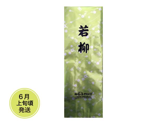 【新茶】若柳