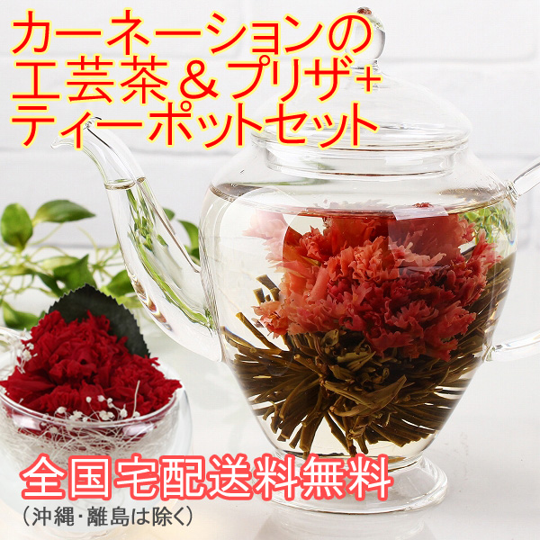 工芸茶母の日ギフト カーネーション花茶とティーポット