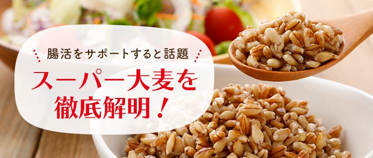 腸活をサポートすると話題 スーパー大麦を徹底解明!