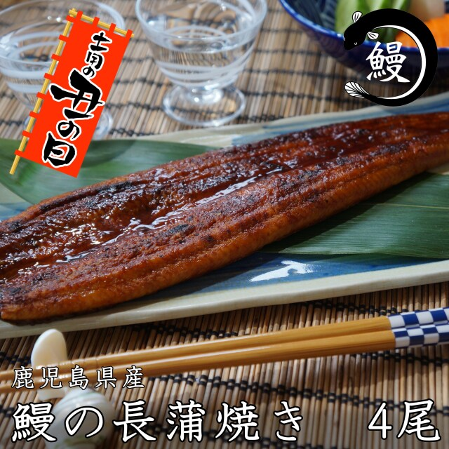 送料無料 鰻の長蒲焼き 4尾セット