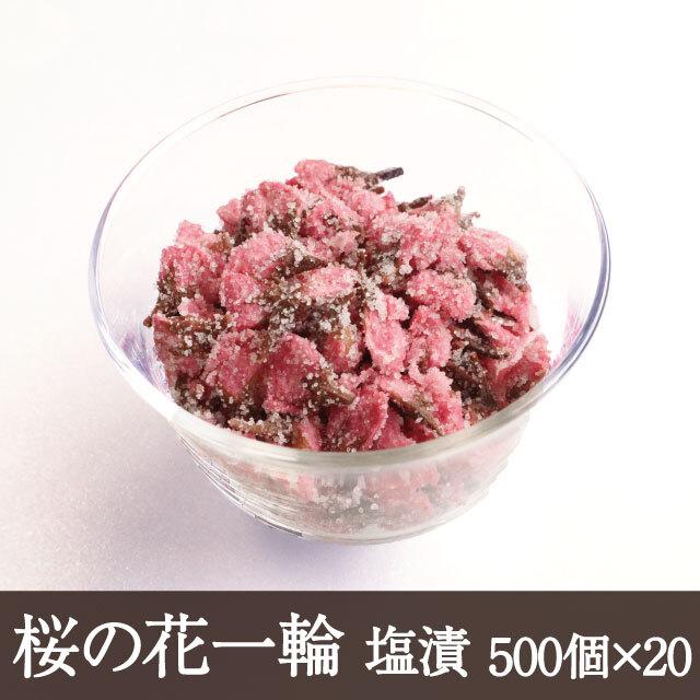 桜の花一輪500個×20