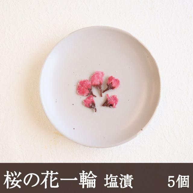桜の花一輪5個