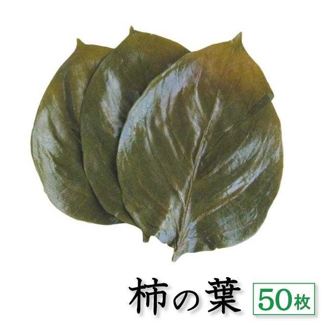 柿の葉 50枚 アイコン