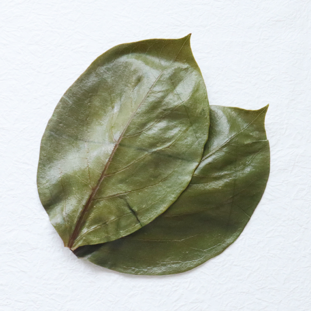 そのまま使える柿の葉 [洗浄・塩抜・乾燥済 500枚]