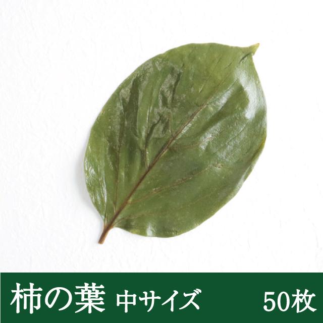 柿の葉中50枚